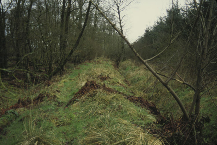 Scots Dike, The Debateable Land